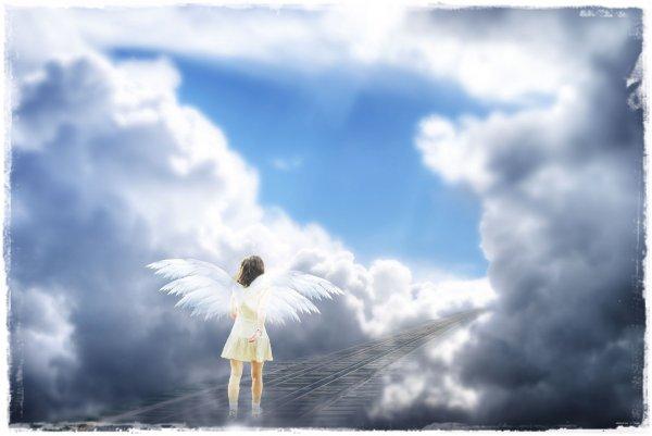 angyal-sikerutja